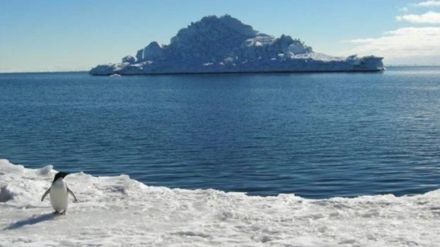 Antartica 2000